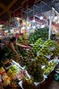 IMGP7840 Fruit at the market (Claudio e Lucia Images around the world) Tags: portrait lady smile smiling beautiful street hochiminh saigon vietnam pentax streetmarket vendor pentaxk3ii sigma sigma1020 market fruit fruitmarket