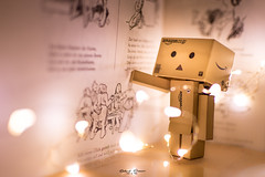 reading #Danbo (graser.robert) Tags: 35mm book d7100 danbo germany lichterkette lights nikon robertgraser light lighttime read
