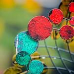Circles and Colors thumbnail
