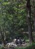 North Korean people enjoying a picnic in a park on a sunday, Pyongan Province, Pyongyang, North Korea (Eric Lafforgue) Tags: adults asia asian communism day dictatorship dprk environment foodanddrink groupofpeople happiness healthylifestyle highangleview img0215 leisureactivity lifestyles nature nonurbanscene northkorea northkorean outdoors park picnic picnicblanket pyongyang relaxation simpleliving sitting smallgroupofpeople summer sunday togetherness tranquilscene tranquility tree vacations vertical weekendactivities pyonganprovince 北朝鮮 북한 朝鮮民主主義人民共和国 조선 coreadelnorte coréedunord coréiadonorte coreiadonorte 조선민주주의인민공화국 เกาหลีเหนือ קוריאההצפונית koreapółnocna koreautara kuzeykore nordkorea північнакорея севернакореја севернакорея severníkorea βόρειακορέα