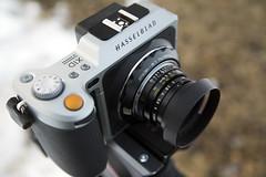 Leica M to Hasselblad XCD Adapter (FotodioxPro) Tags: hasselbladx1d hassy hasselbladxcd xcdmount mediumformat mediumformatdigital x1donlocation leicam leicamtohasselbladxcd leicamonx1d leicasummicronc40mmf2 summicronc primelens vintagelens lensadapter fotodiox fotodioxpro sonya7sii