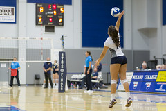 2017 CCCAA Women's Volleyball State Championships – Quarterfinals, College of the Canyons vs. Irvine Valley (davidmoore326) Tags: volleyball championship cccaa state tournament solano photo photography image dslr canyons irvinevalley fairfield california unitedstatesofamerica
