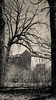 Fort Snelling Abandoned House (Lizzy Lentsch Photography) Tags: fortsnelling abandoned abandonedhouse april spring woods forest house tree
