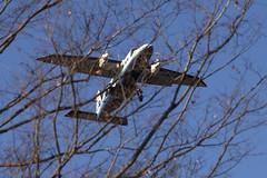 A SMALL AIRPORT, SOME PARKS AND CLOUDS - CXXXVIII (Jussi Salmiakkinen (JUNJI SUDA)) Tags: chofu tokyo japan cityscape park wood landscape nogawa 調布 林 森 武蔵野 多摩 東京 日本 風景 公園 野川公園 january winer woods tree 2017 tammikuu turboprop dornier do228 aircraft airplane