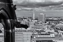 Hamburg (michael_hamburg69) Tags: hamburg germany deutschland view overview aussucht viewpoint observationdeck hopfenmarkt stnikolai 76meter aussichtsplattform stnicholaschurch gargoyle wasserspeier heinrichhertzturm fernsehturm