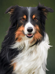 Tri_Colored_Border_Collie (Shara_Lee) Tags: dog pet bordercollie tricoloredbordercollie workingdog purebreed purebred pedigree dogportrait bordercolliedogportrait petportrait windswept flowing fur black white tan darktan northumberland northumberlanddogs painting digitalpainting digitalart digitalfineart sharaleeart