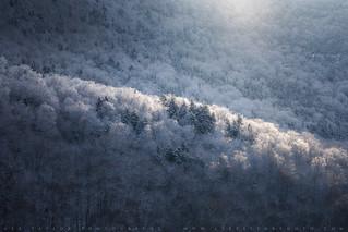 Snowglow