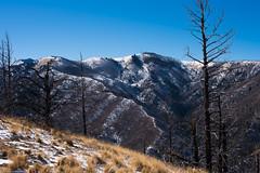 sierra blanca (Tomás Harrison Fotos) Tags: ruidoso sierrablanca d750 nikon afnikkor50mmf14d mountains availablelight landscape skylinecampground forestservicerd117 nm austin tx usa