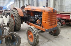 Fiat R 80 (samestorici) Tags: trattoredepoca oldtimertraktor tractorfarmvintage tracteurantique trattoristorici oldtractor veicolostorico 80r