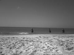 Three Amish (brotherM) Tags: lores digitalharinezumi florida lidokey monochrome blackandwhite beach lidobeach mystery