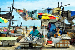 Selling fish... (Ilargia64) Tags: women localmarket street market fish colors people travel explore india amayasanchez throughherlens