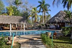 Piece of paradise (Chemose) Tags: mexico mexique yucatán yucatan izamal hacienda paradis paradise arbre palmier tree piscine swimmingpool eau water palmtreehdr canon eos 7d mars march