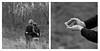 Tenderness.... (l'imagerie poétique) Tags: limageriepoétique poeticimagery friendship mediumformat kodaktmax400 bronicasqa 150mmf35 diptych tenderness wintermood 6x6 believeinfilm istillshootfilm filmisnotdead