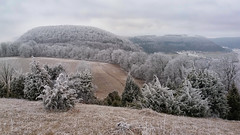 Frosty Rime / Raureif (Chris Kex) Tags: swabian jura rime frost raureif schwäbische alb