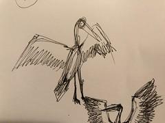 wingspan (miketrujillo) Tags: drawing art sketch ballpoint black white animals creature photo illustration