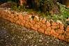 Ψίνθος (Psinthos.Net) Tags: χαλαζόπτωση χαλάζι καταιγίδα ψίνθοσ ρόδοσ hail hailstorm storm psinthos rhodes rhodos rodos μπόρα νυχτερινήκαταιγίδα nightstorm winter january ιανουάριοσ γενάρησ χειμώνασ νύχτα night βράδυ βράδυχειμώνα χειμωνιάτικοβράδυ νύχταχειμώνα χειμωνιάτικηνύχτα square psinthossquare πλατεία πλατείαψίνθοσ πλατείαψίνθου rain βροχή νερό water ελιά κορμόσδέντρου treetrunk greens χόρτα ελαιόδεντρο olivetree olive stonewall πετρόχτιστο πετρόχτιστοστοίχοσ πέτρεσ stones soil χώμα πεσμέναφύλλα fallenleaves oliveleaves φύλλαελιάσ πεζούλι mantel