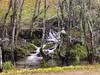 Naturaleza pura (la_magia) Tags: ancares naturaleza niebla arboles riocascadas reservadelabiosferalosancaresleoneses agua piedras seda otoã±o candãn leon espaã±a candín españa otoño