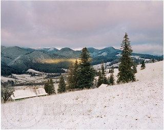 Snowy morning in the Carpathians № 2