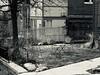 Urban Oasis (Robert Cowlishaw (Mertonian)) Tags: robertcowlishaw yard urban canonpowershotg1xmarkiii markiii g1x powershot canon mertonian winter table lunchwalk february fourchairs blackandwhite bw urbanoasis