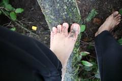 IMG_1228 (bfe2012) Tags: barefoot barefeet barefooting barefooted barefooter barefoothiking barefootlifestyle feet dirtyfeet toughsoles