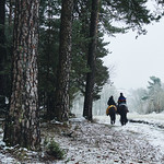 Snow riders thumbnail