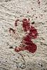Sangre (Rodrigo Blanco Photography) Tags: blood sangre footprint huella suelo rastro herida animal
