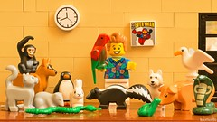 ace ventura (black.zack00) Tags: ace ventura lego minifig minifigure photographer afol toy dog cat movie