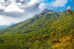 Yercaud hill, Tamilnadu, India (Suresh V Raja) Tags: yercaud hill mountain sky clouds landscape nikon suresh chennai tamilnadu india sureshcprog sureshphotography d5300 scenic salem