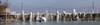 Väterchen Frost zu Besuch am Bodensee (bohnengarten) Tags: schweiz swiss switzerland eos 80d thurgau bodensee lake constance romanshorn frost eis kalt