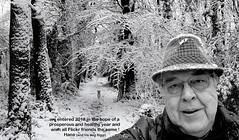 best wishes for 2018 (HansHolt) Tags: 2018 newyear nieuwjaar wishes prosperous healthy selfie winter snow sneeuw dog hond terrier borderterrier path pad cold koud wood forest bos trees bomen light licht landscape landschap monochrome bw zw canon 6d canoneos6d canonef24105mmf4lisusm