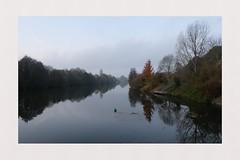 (spotfer) Tags: juignésursarthe juigné solesmes sablésursarthe sablé river paysage landscape sarthe paysdelaloire france fujifilm fujix nature art potfersebastien