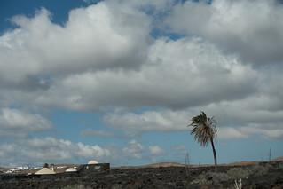 Lava landscape, Tahiche, Lanzarote, Canary Islands, Spain