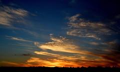 No Velho 93 (Eduardo Amorim) Tags: pôrdosol poente entardecer poniente atardecer sunset tramonto sonnenuntergang coucherdesoleil crepúsculo anoitecer bagé riograndedosul brésil brasil sudamérica südamerika suramérica américadosul southamerica amériquedusud americameridionale américadelsur americadelsud brazil eduardoamorim