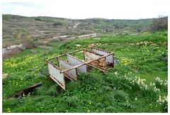 The Rack (awbaganz) Tags: rack gozo malta europe landscape decay rust fujifilm xt1 lawn green