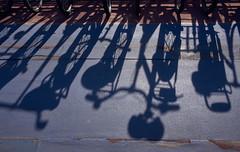 Bicycle Shadows in Blue, Amsterdam 2017 (pmhudepo) Tags: amsterdam bicycle bike fiets bicycleparking fietsenstalling schaduw shadow blue
