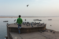 feeding time (Prakash clicks) Tags: pigeons birds man green varanasi river photographyofindia lifeinindia life outdoor evening india canon cwc chennaiweekendclickers