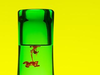 In a Bottle 1a