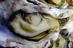 DSC00042 (muzina_shanghai) Tags: 牡蠣 蒸し牡蠣 oyster
