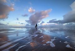 """ LIFE "" (Wiffsmiff23) Tags: cwmnash heritagecoastlinesouthwales sea sunrise southwales sky reflections seaweed serene traeth beach"