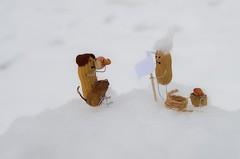 Conquering the summit (Jumpin'Jack) Tags: peanut man people dog mountain climber standing onthe top peak summit ofa holding sticking flag pole snow rope bag rucksack photographer cameraman toys sculptures fun pun