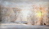 Low sunlight. (BirgittaSjostedt) Tags: winter landscape frost snow tree house way horse people sweden birgittasjostedt o keep on bumping into this picture
