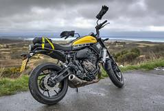 soa8 (Antony Ward UK) Tags: yamaha xsr motorbike 60th anniversary kenny roberts 700 yellow ride out new forest dorset poole bournemouth