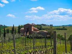 Montepulciano (jmigs88) Tags: italy tuscany travel montepulciano toscana it italian wine country italiancountryside