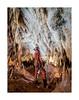 Mur d'excentriques - Aven Armédia (30) - France (Romain VENOT) Tags: armedia aven grotte spéléologie caving caves excentriques concrétions calcite