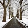 NJ Snow Day! (Arclight Images) Tags: nj photographer ny