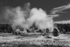 Grotto Geyser_27A0973 (Alfred J. Lockwood Photography) Tags: alfredjlockwood nature landscape grottogeyser eruption steam yellowstonenationalpark summer morning monochrome wyoming