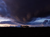 018 - Thundercloud over copse (Donnie Canning) Tags: wwwdonniephotographycouk donnie donniecanning olympus microfourthirds photography photo photographer lens canning em1 1240mm pro 2018 365 project photoaday project365 copse trees cloud thundercloud storm sun dusk wideangle sky skyline outdoor landscape land ground foreground nature naturalworld view vista sunset goldenhour twilight orange stevington bedford
