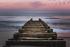 Draining Into the Atlantic (DazerVin Photography) Tags: nikon long exposure lee filters d810 2470mm nikkor expo sand clouds atlantic nj new jersey asbury park shore beach