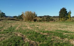 lot 6, Horns crossing rd, Vacy NSW