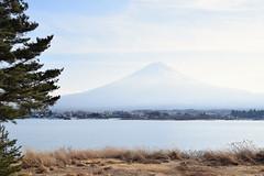 Fujisan (雷太) Tags: yamanashi japan fujiyama mount fujikawaguchiko fuji lake